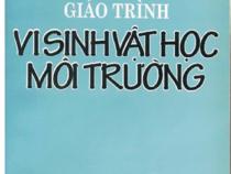 Giáo Trình Vi Sinh Vật Học Môi Trường – Trần Cẩm Vân