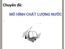 Chuyên đề Mô Hình Chất Lượng Nước – Trần Văn Quang