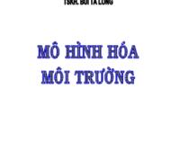Mô Hình Hóa Môi Trường – TSKH.Bùi Tá Long