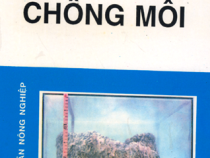 Tài liệu Chống Mối – Nguyễn Chí Thanh